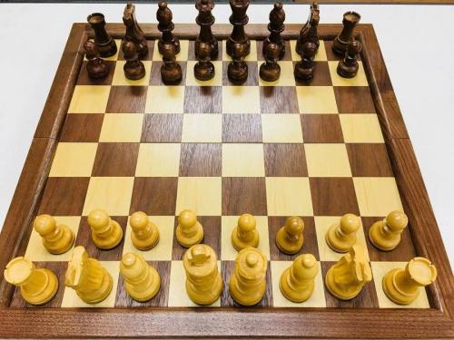 おもちゃのチェス