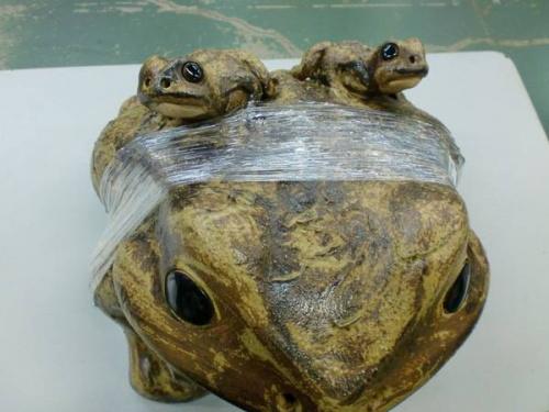 信楽焼きの蛙