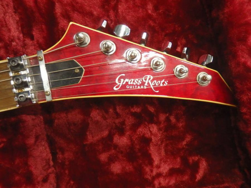 ギターのGrassroots