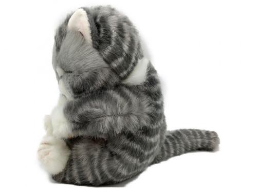 猫の二俣川 ホビー