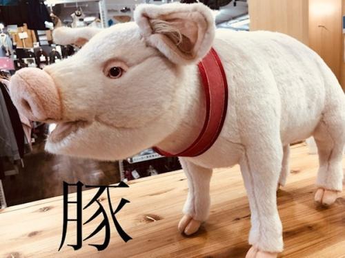 雑貨の豚 横浜