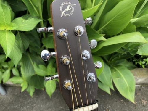 アコースティックギターのSEAGULL