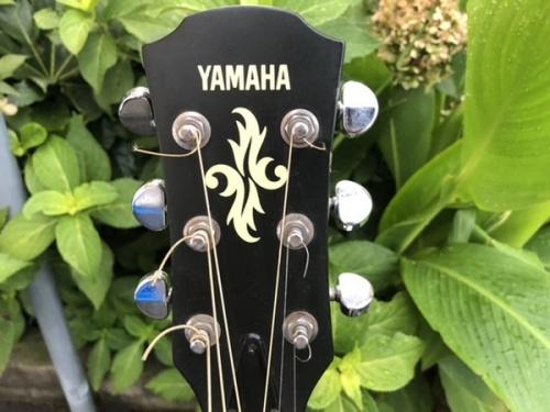 エレキアコースティックギターのYAMAHA