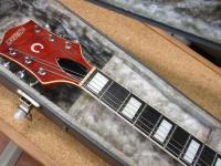 エレアコギター