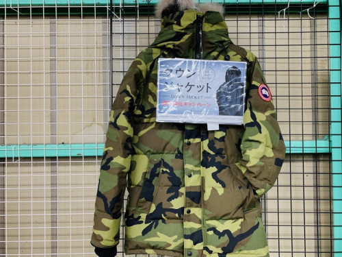 CANADA GOOSEのTHE NORTH FACE