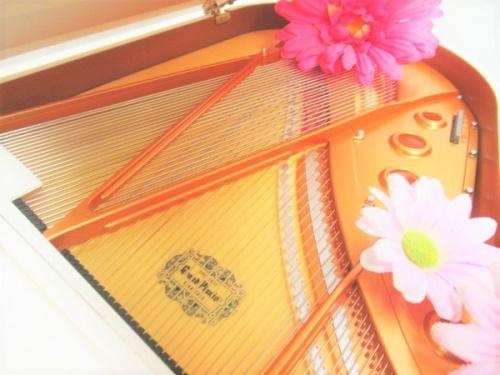 ヤケ有 GRAND PIANIST 自動演奏のホワイト