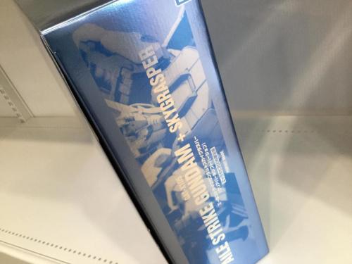 ゼータガンダム MSZ-006 マルチコーティングveのGAT-X105 エールストライクガンダム 1/60 キャラホビ2006限定版