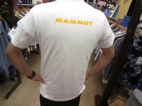 Tシャツの買取強化