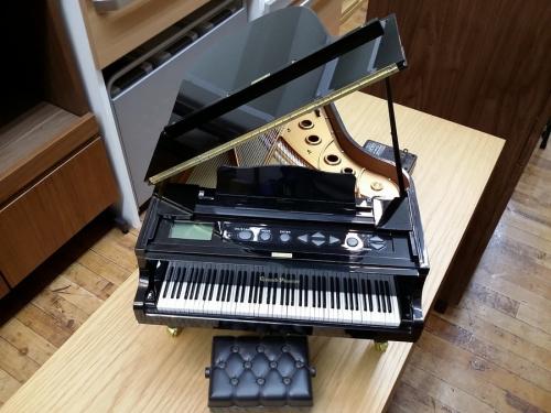 ピアノコンサートプレーヤーのGrand Pianist