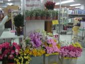 造花の激安