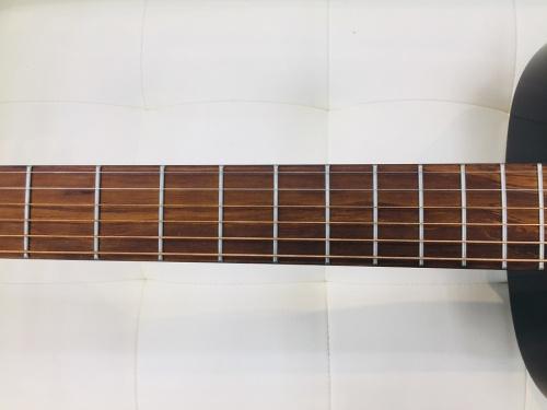 LAGのアコースティックギター