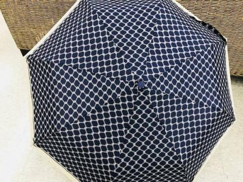 レインブーツの傘の日
