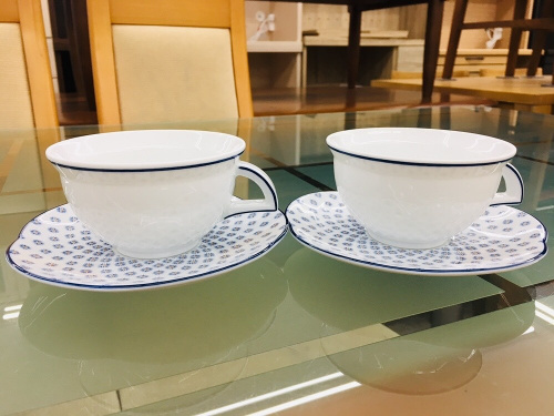RICHARD GINORIのカップ&ソーサー