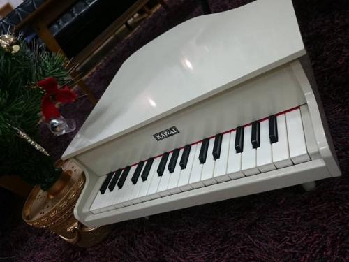 プレゼントの楽器