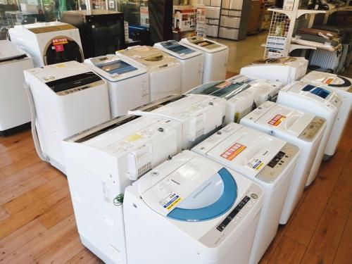 生活家電 洗濯機の洗濯機 乾燥機