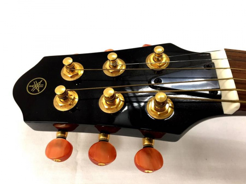 サイレントギターの東久留米店楽器