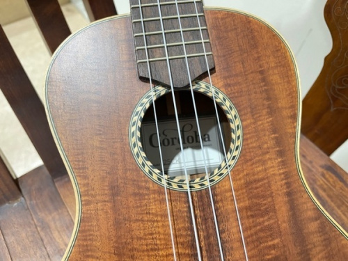 ウクレレの東久留米 楽器 買取