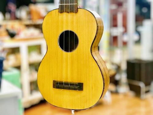 アコースティックギターのベース