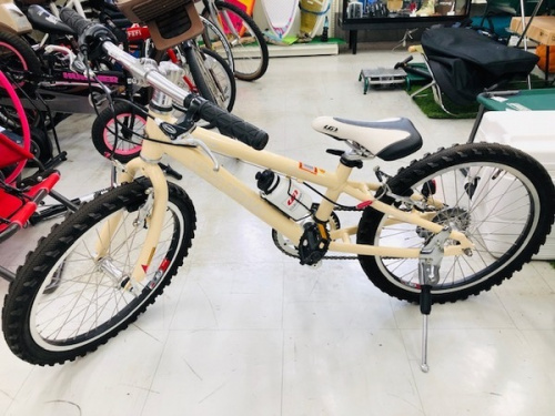 自転車のマウンテンバイク