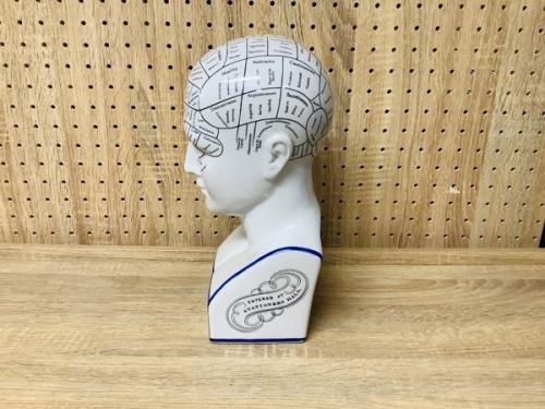 置物の大 Ceramic PORCELAIN Head Bust Phrenology By L N Fowler
