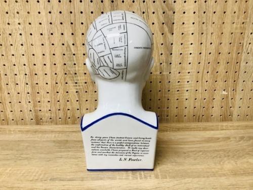 大 Ceramic PORCELAIN Head Bust Phrenology By L N Fowlerの骨相学