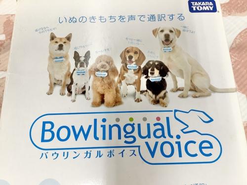 ホビー イヌ 犬のおもちゃ dog DOG