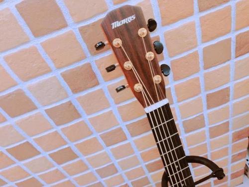 楽器 買取 宇治のギター 買取