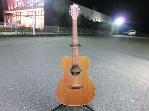 中古 ギターの中古 SEED