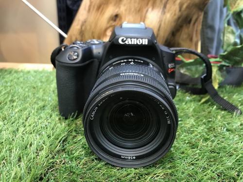 一眼レフカメラのカメラ 中古 八王子