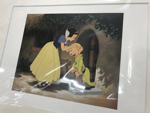 Disneyのディズニーランド