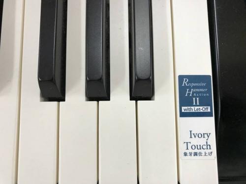 ピアノの楽器