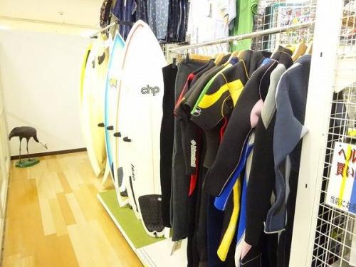 関西の岸和田 スポーツ