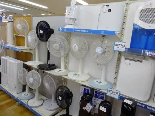 扇風機の岸和田 家電