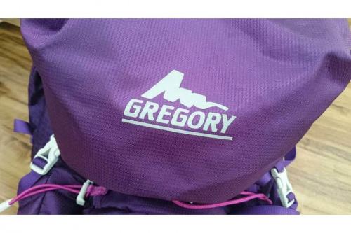 グレゴリー(GREGORY)のブリーフバッグ