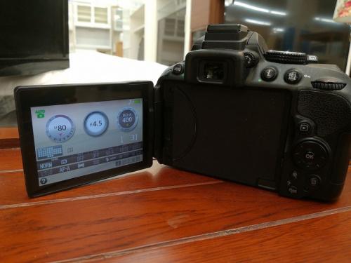 NikonのD5300