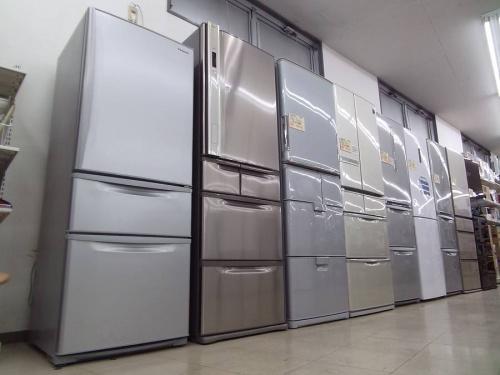 季節家電の冷蔵庫