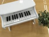 ホビー の楽器