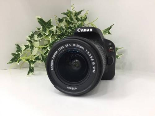 キャノン(Canon)