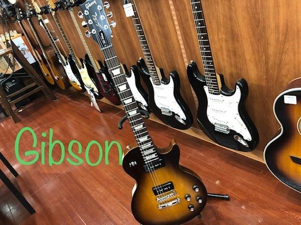 Gibson(ギブソン) 50'sTRIBUTE レスポール入荷【所沢店】