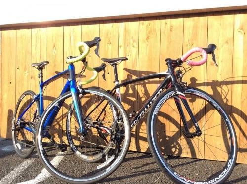 スポーツ・アウトドアのサイクリング