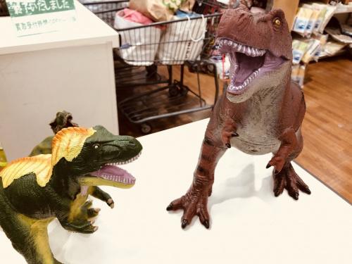 買取の恐竜