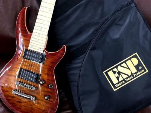 ギターのEDWARDS