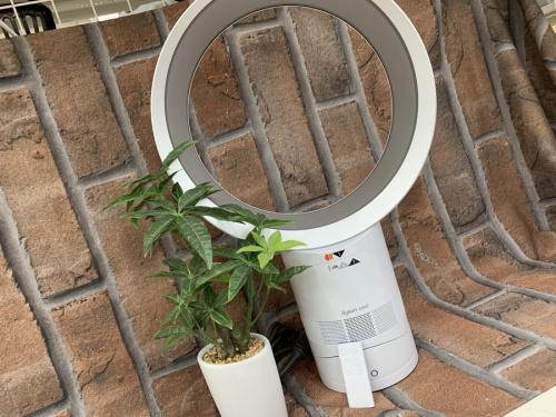 Dyson 扇風機の扇風機