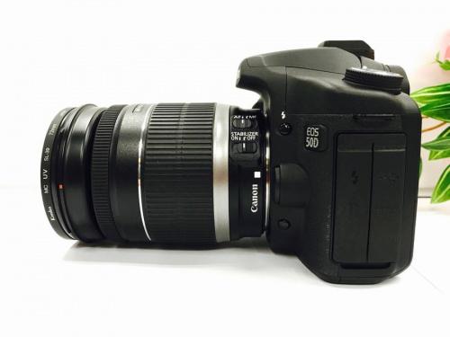 キャノン(Canon)のニコン(NIKON)
