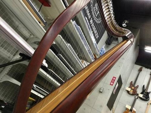 楽器のハープ