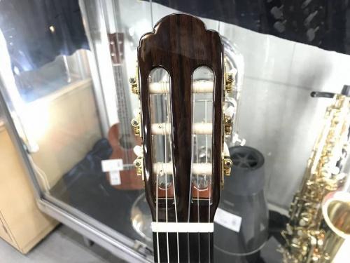 エレアコギターのARIA