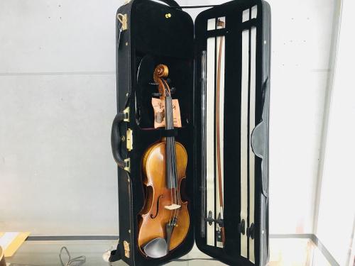 楽器の弦楽器