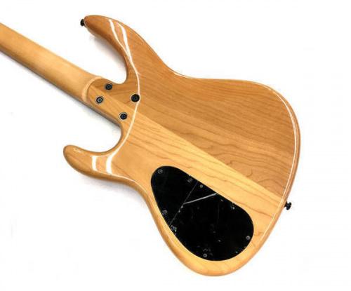 エレキギターのBacchus