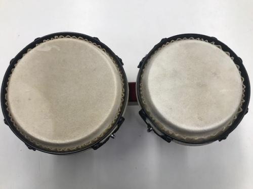 打楽器のボンゴ