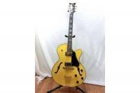 セミアコギター